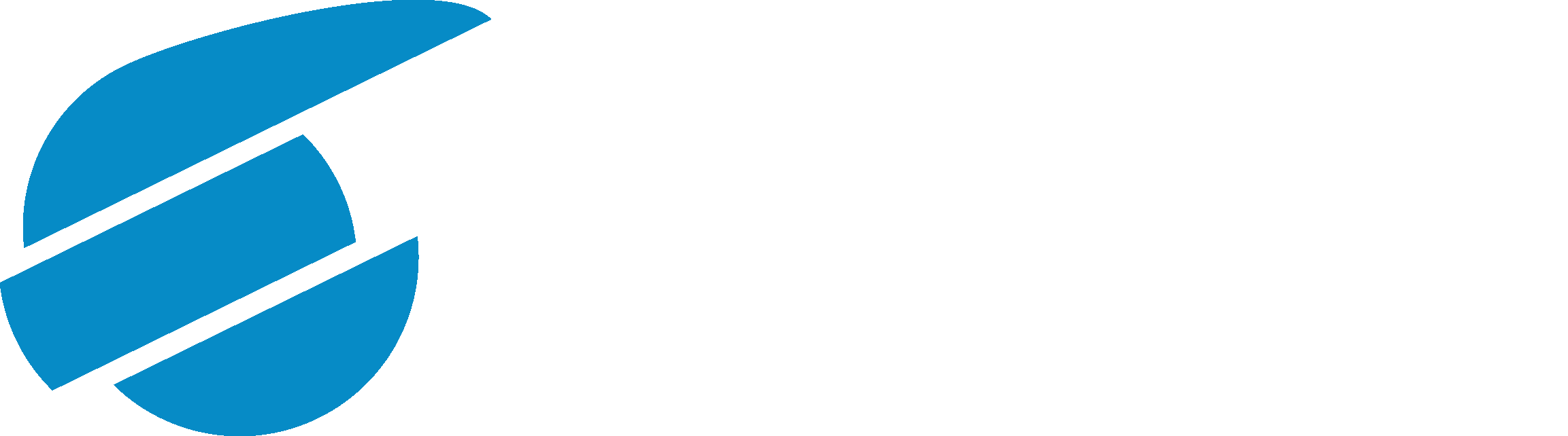 Nilort IT Group